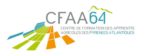 CFA ADAPSSA ITS PIERRE BOURDIEU -